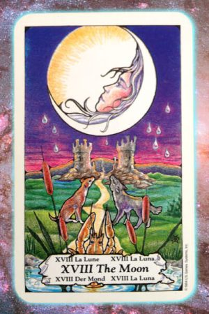 Moon Nine's Path Pleiadian tarot weekly channeled messages