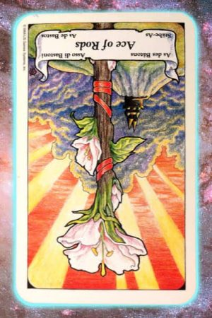 Ace Rods reversed Nine's Path Pleiadian tarot weekly channeled messages