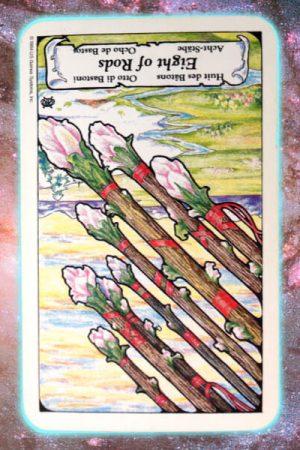 Reversed eight of rods nine's path pleiadian tarot