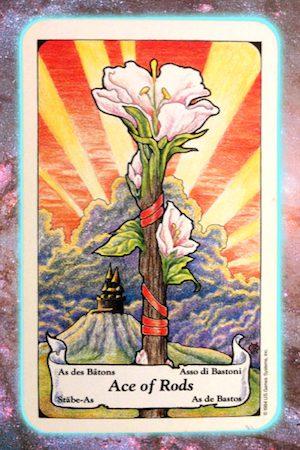 Nine's Path Pleiadian Tarot Ace Rods Wands